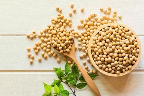 Lựa chọn hạt đậu tương chất lượng