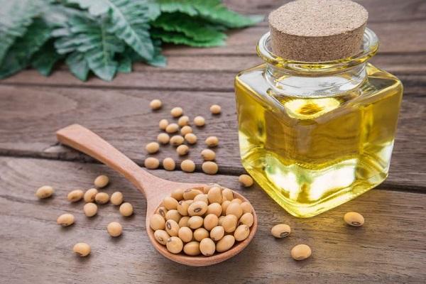 Dầu oliu kết hợp với mầm đậu nành giúp ngăn ngừa lão hóa da