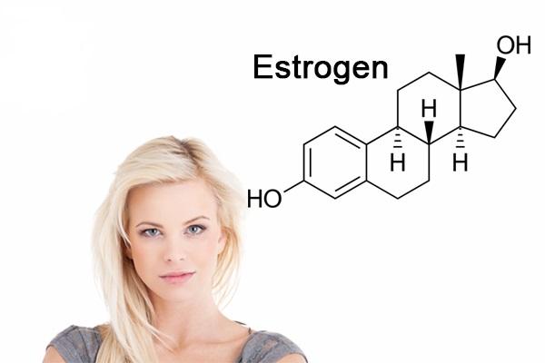 Hormone estrogen là gì? Bổ sung estrogen bằng cách nào?