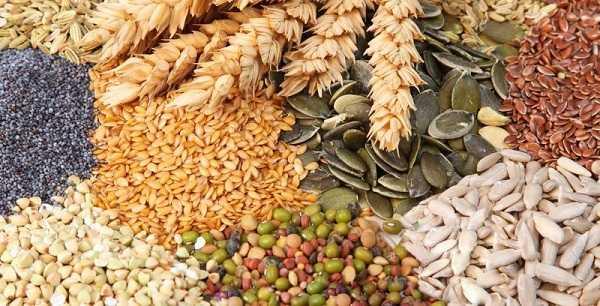 Tăng cường sử dụng ngũ cốc để cải thiện ham muốn