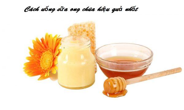 Cách uống sữa ong chúa hiệu nhất là khi sử dụng thường xuyên