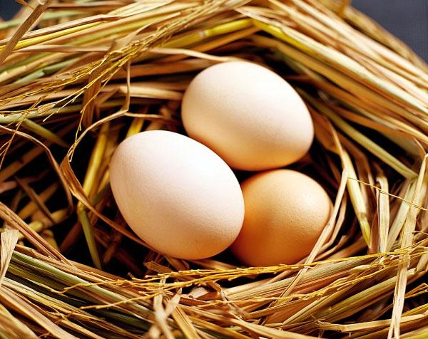 Sử dụng trứng gà trị rạn da đơn giản