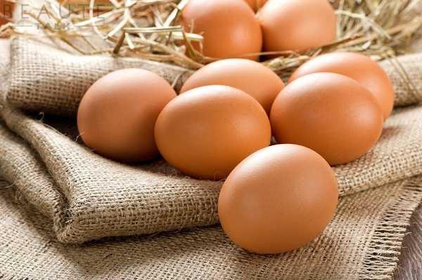 Bổ sung protein từ trứng gà