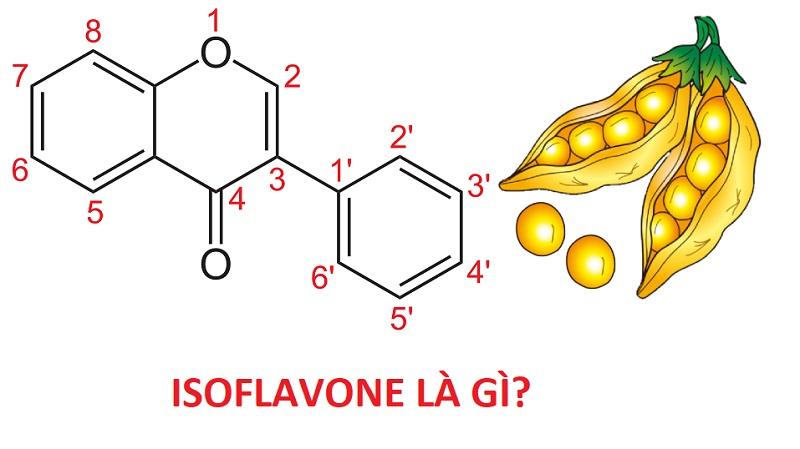 isoflavone, isoflavone trong đậu nành, isoflavone có ở đâu, isoflavone là chất gì, tinh chất isoflavone, isoflavones có trong thực phẩm nào, isoflavone mầm đậu nành, isoflavone trong đậu nành có tác dụng gì, nano isoflavone, isoflavone review