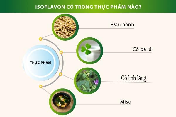 Isoflavon có trong thực phẩm nàoe